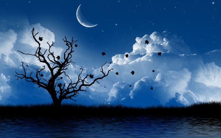 Beautiful night nature clipart.