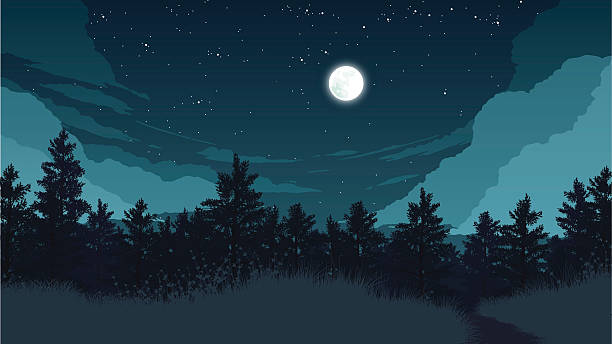 Forest At Night Clipart.