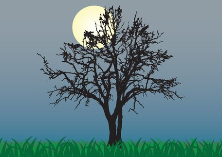 Moon & Tree Silhouette at Night Background (Free) Clipart.