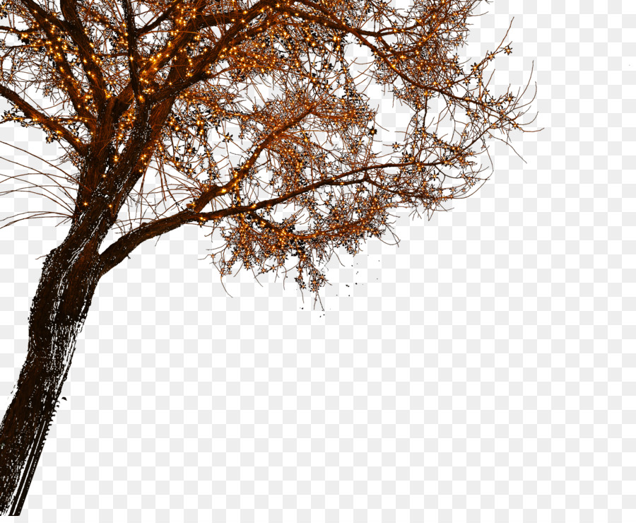 Tree Line png download.