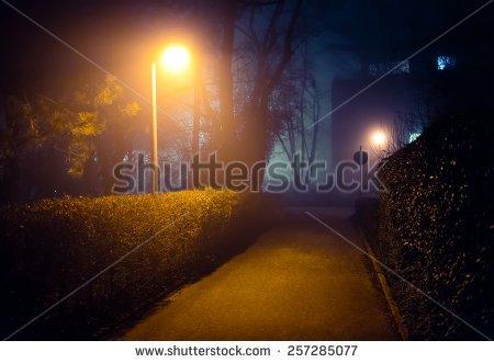 Light The Night Walk Art Clipart.