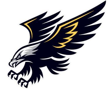 File:Logo CSS NightHawks.png.