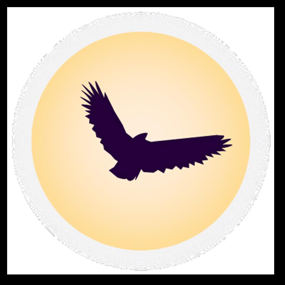 Solar Moon Nighthawk PNG Transparent Clipart.