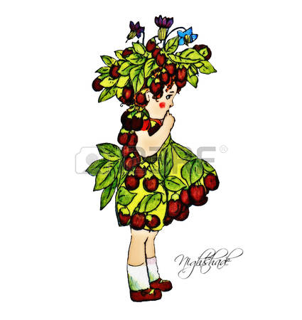 191 Nightshade Stock Illustrations, Cliparts And Royalty Free.