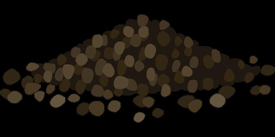 Free vector graphic: Black Pepper, Spices, Piper Nigrum.