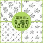 Ribes Nigrum Clip Art.