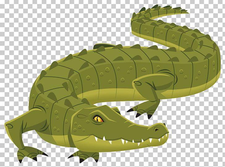 Nile Crocodile Alligator Crocodiles PNG, Clipart, Alligator.