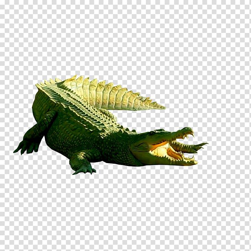 Nile crocodile Crocodiles, Crocodile transparent background.