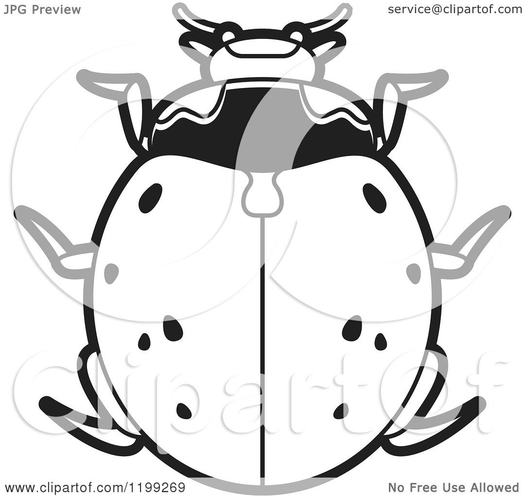 Clipart of a Black and White Nine Spotted Lady Beetle.