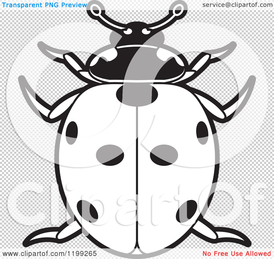 Clipart of a Black and White Spotted Lady Beetle.