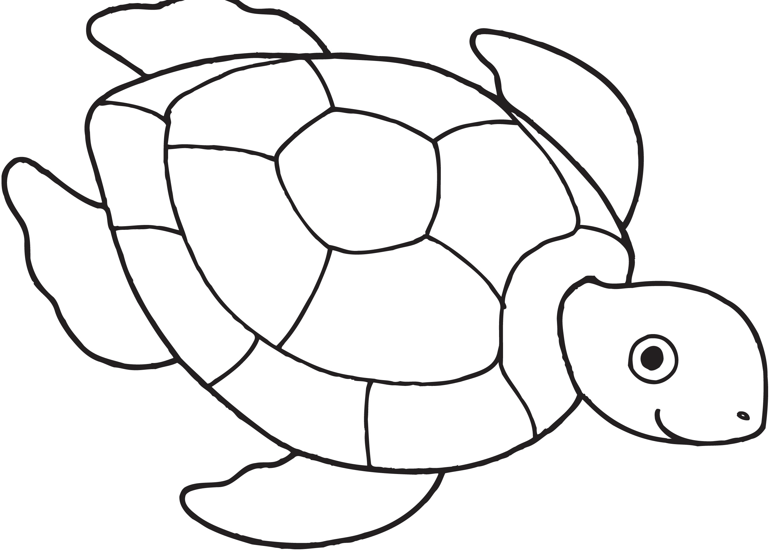 Turtle Black And White Clipart Coloring Page.