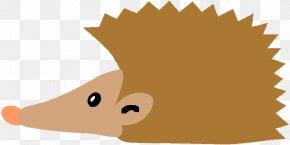 Hedgehog Porcupine Nintendo Seal Of Quality Snout, PNG.