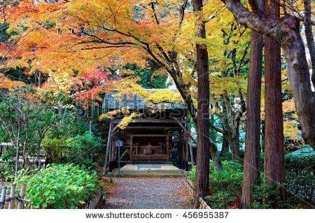Japanese Arbor Stock Photos, Royalty.