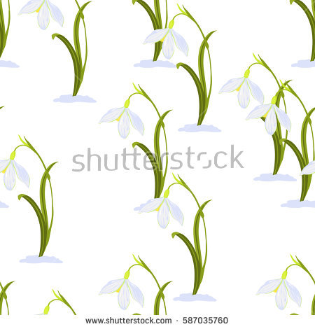 Nivalis Stock Vectors, Images & Vector Art.