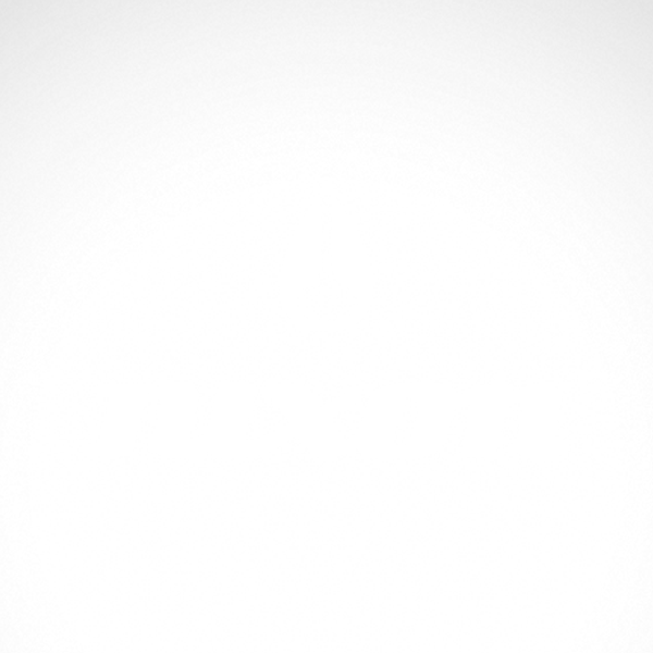 Simple color vinyl Nixon Logo.