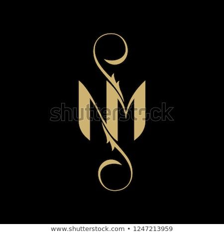 Elegant Letter NM Logo Template.