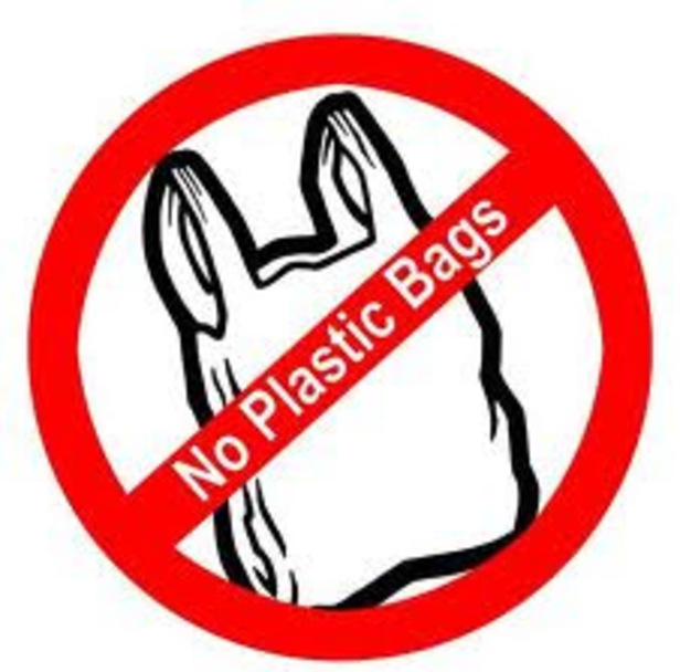 Do one thing! AVOID PLASTIC BAGS — Voices of Youth.