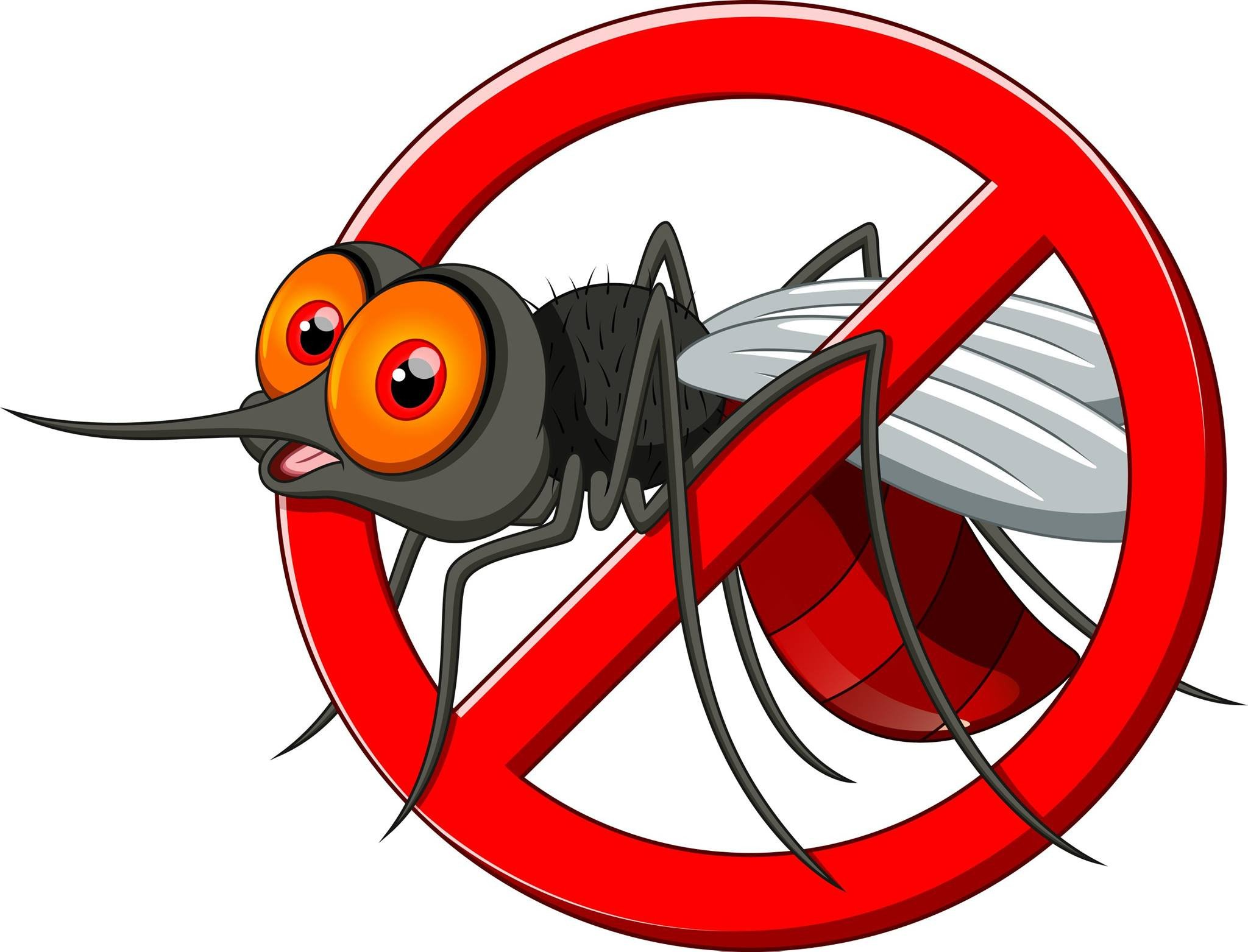 No Bugs Allowed Essential Oil Blend.