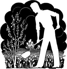 Build a vegetable Garden. Building and preparing an organic garden.