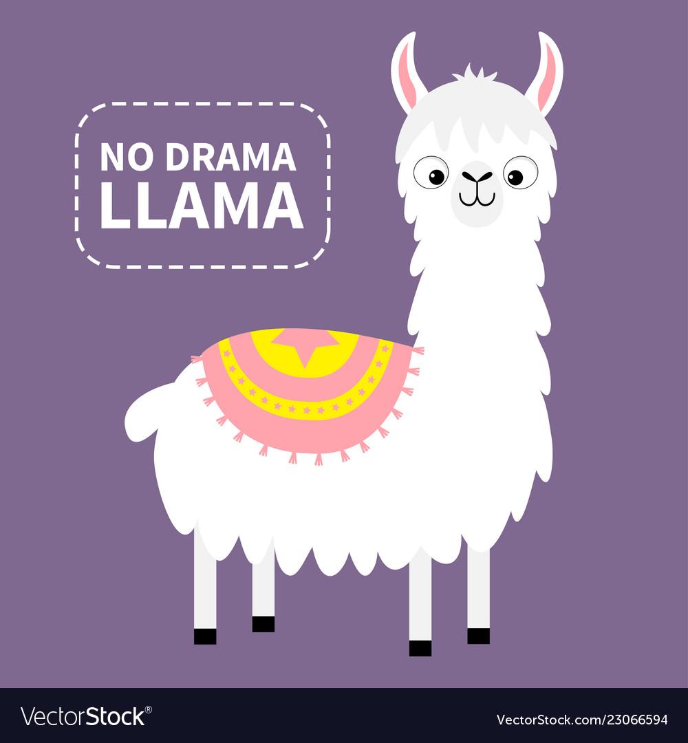 No drama llama alpaca animal cute cartoon funny.