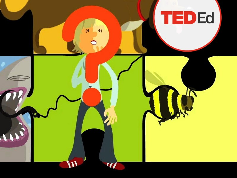 Chris Anderson (TED): Questions no one knows the answers to.