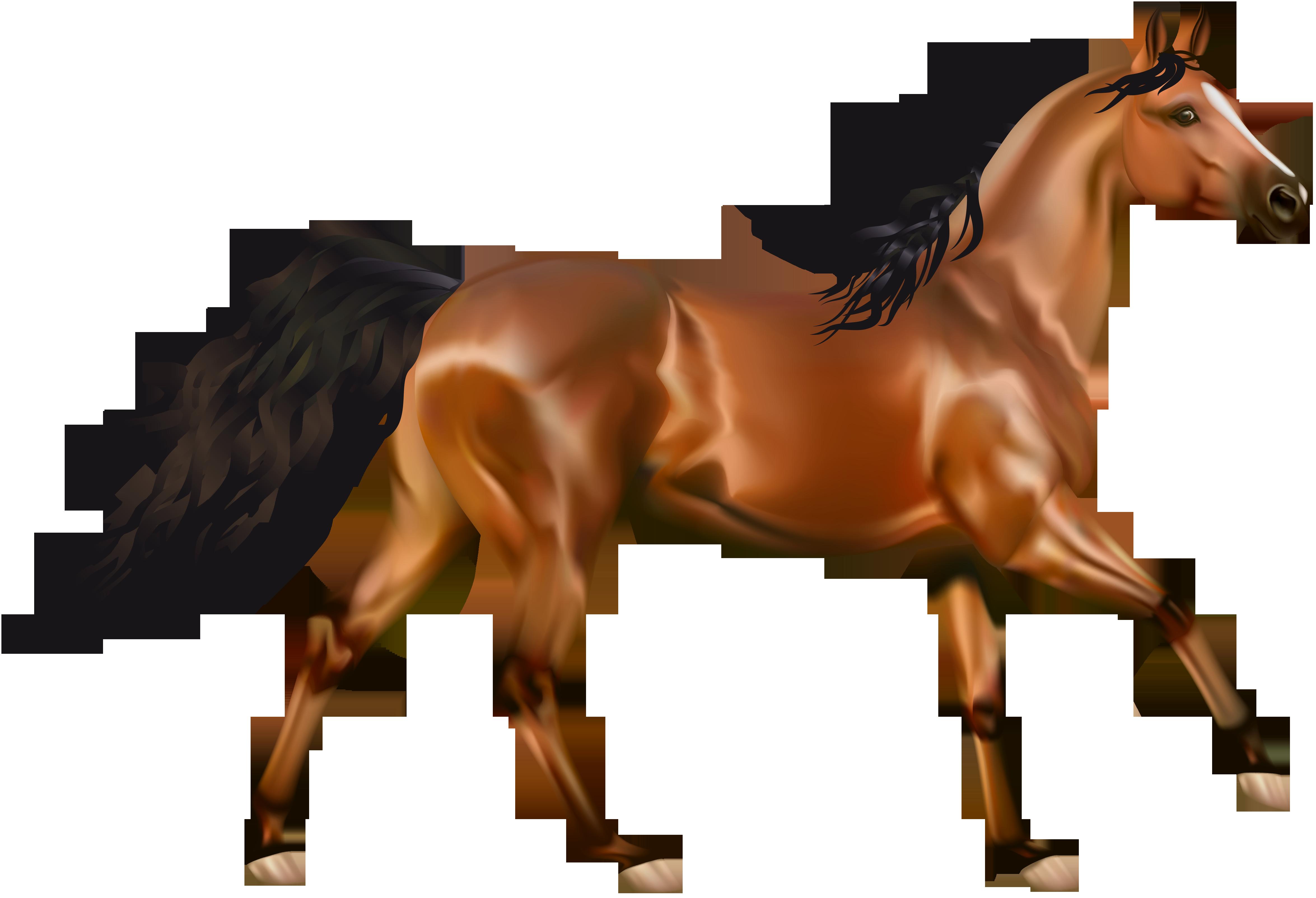 Horses clipart no background.