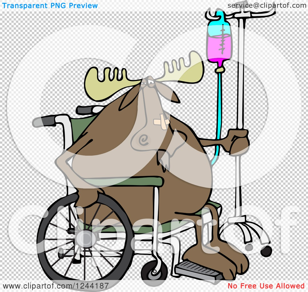 Clipart of an Injured Hospital Patient Moose in a Wheelchair with.