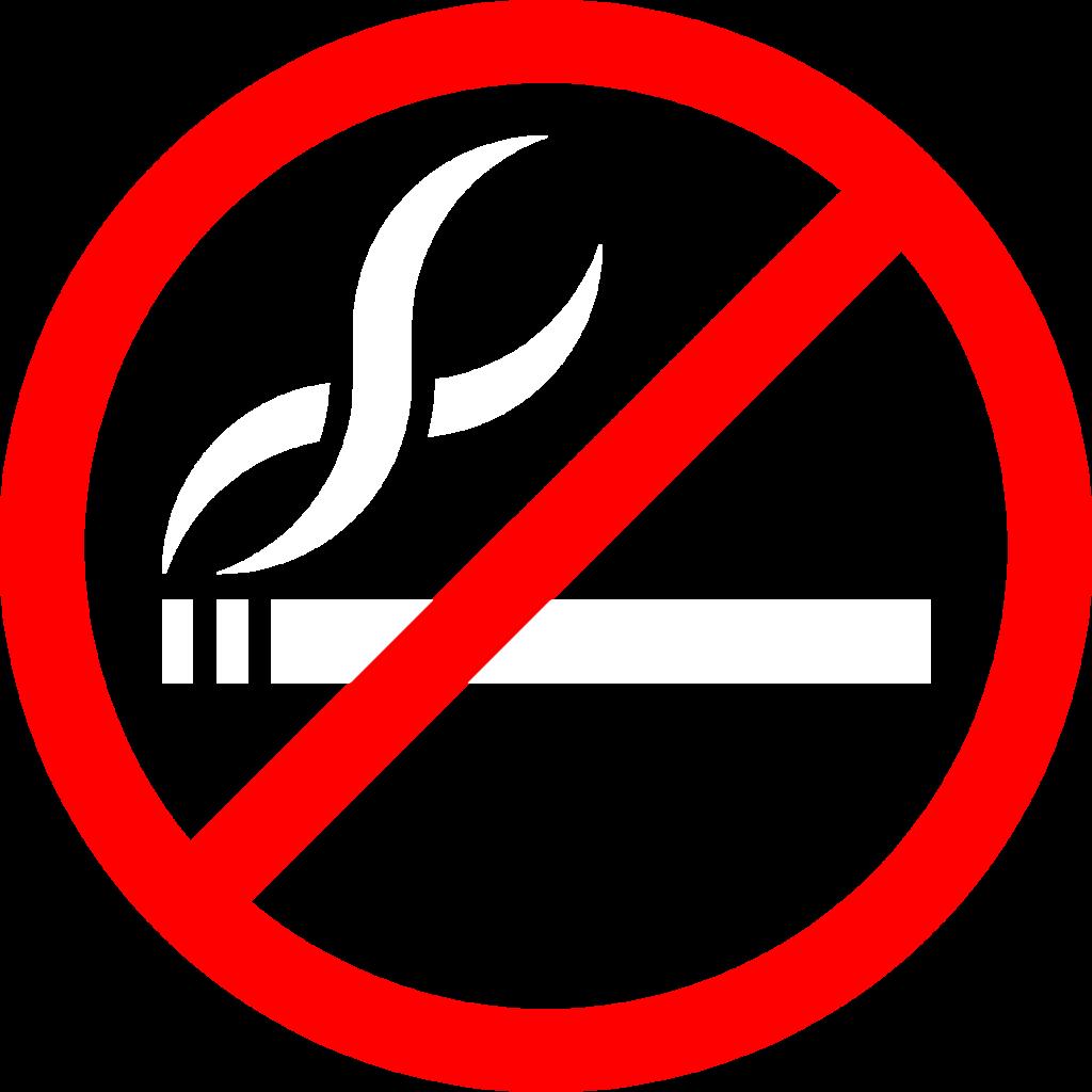 No logo png 7 » PNG Image.