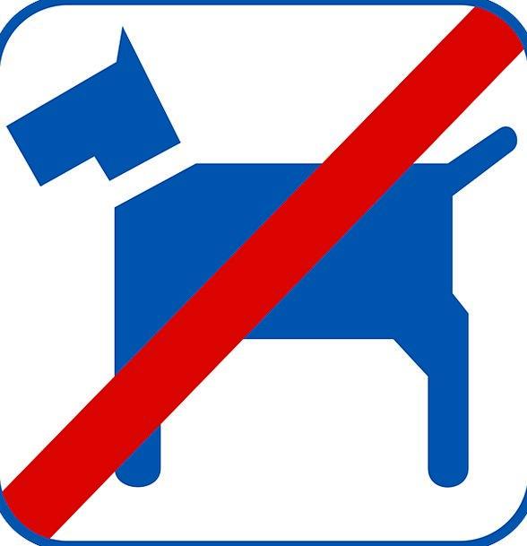 No Pets.