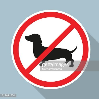 NO Dogs Allowed Sign ON Blue premium clipart.
