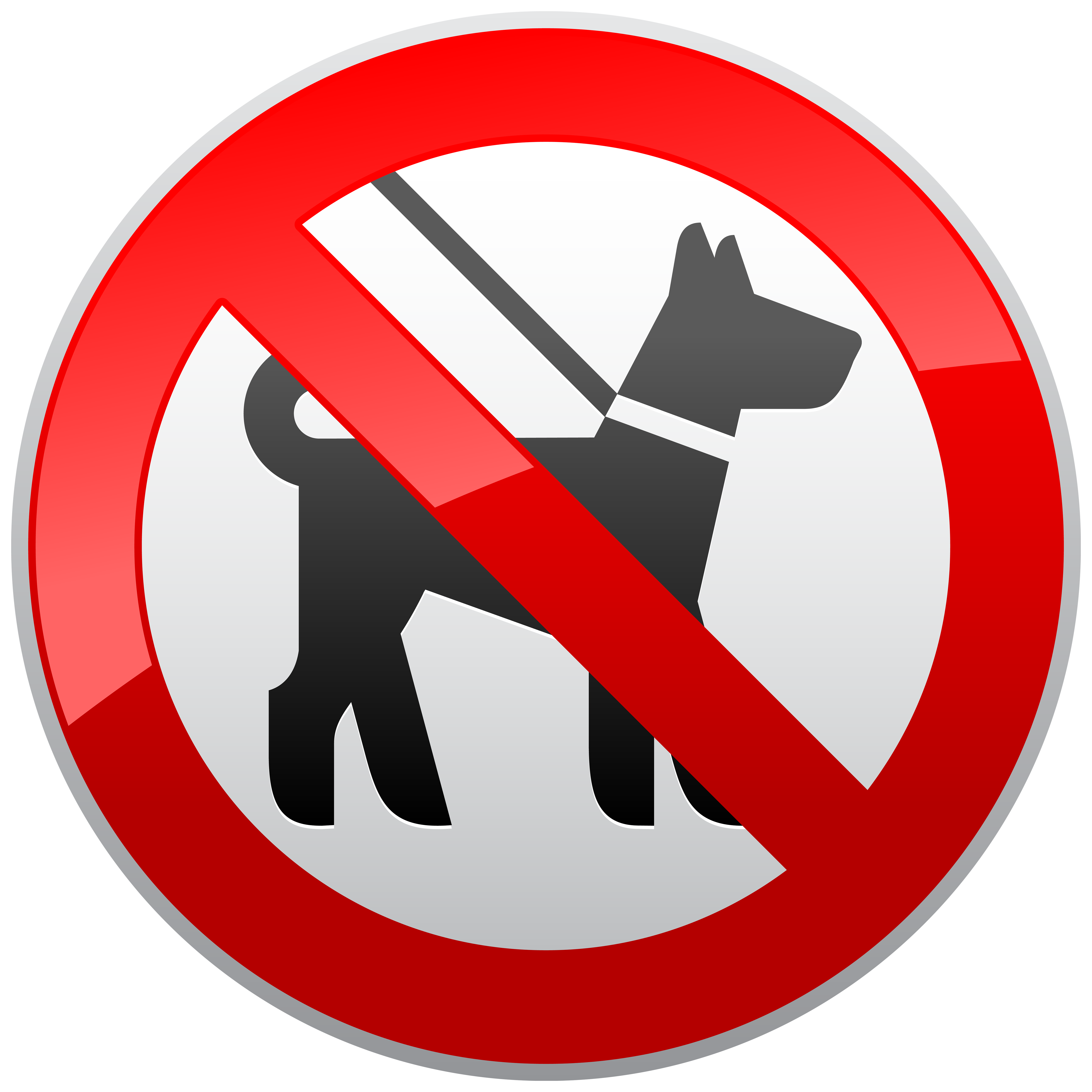 No Dogs Sign Prohibition PNG Clipart.