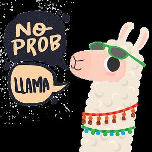 No Prob llama 2 1 by CarbyCo.