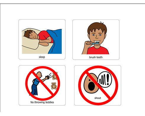 No Throwing Toys and Teddies.