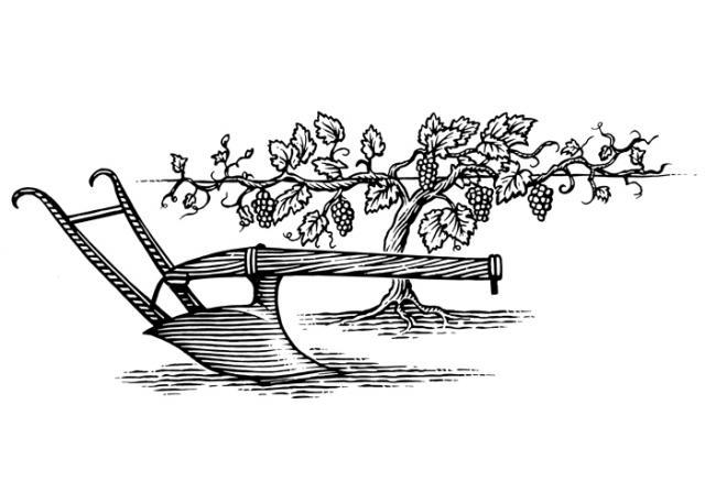Steven Noble Illustrations: Vine & Plow.