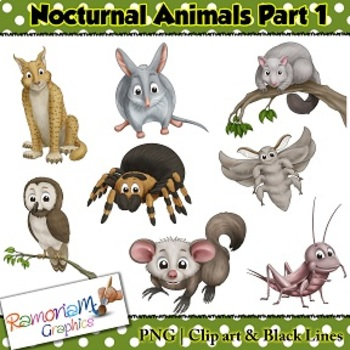 Nocturnal Animals Clip art.