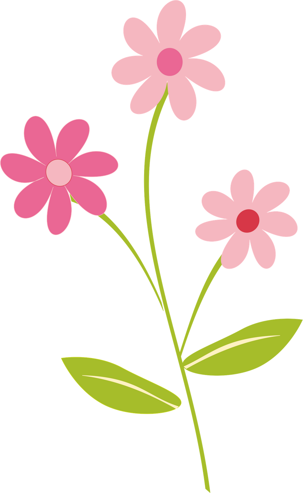 Flowers Border Clipart Png.
