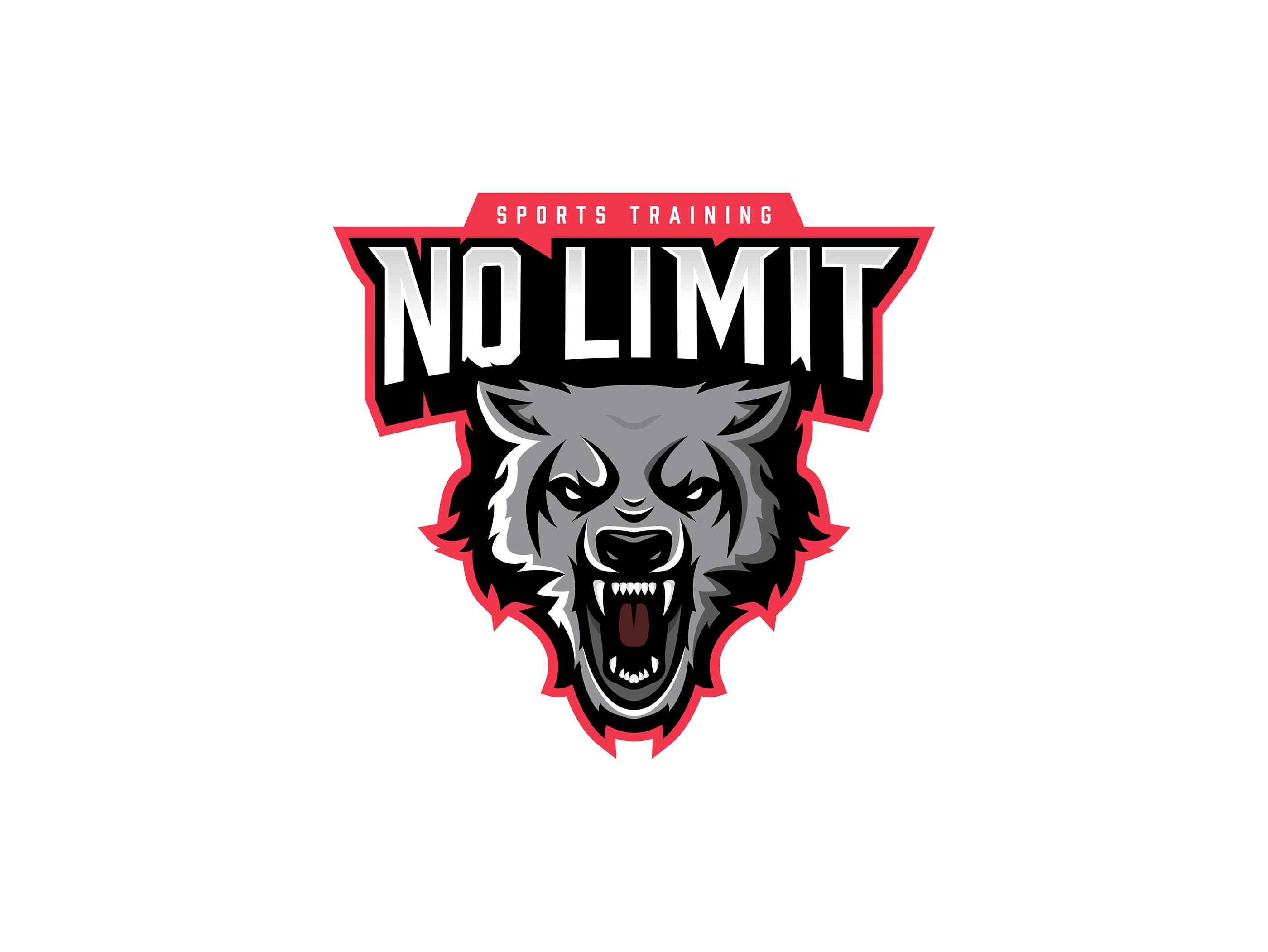 No Limit Sports Branding on Behance.