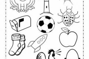 Living things clipart black and white 3 » Clipart Station.