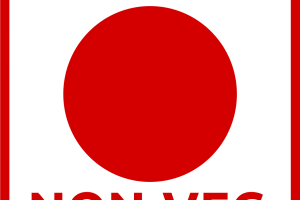 Non veg symbol png 1 » PNG Image.