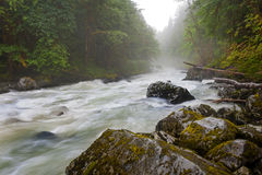 Nooksack River Stock Photo.