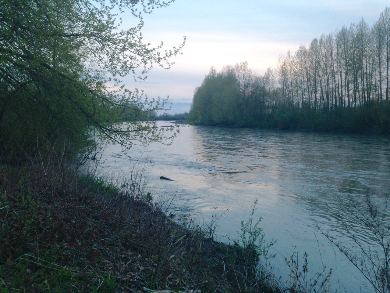 Flood watch issued for Nooksack River.