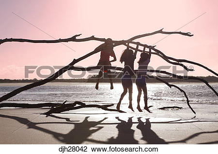 Stock Photo of Australia, Queensland, Sunshine Coast, Noosa Heads.