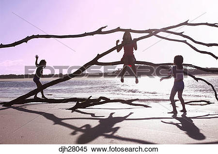 Stock Image of Australia, Queensland, Sunshine Coast, Noosa Heads.