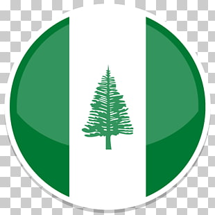 15 norfolk Island Pine PNG cliparts for free download.