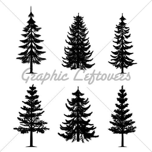 Pine Trees Collection · GL Stock Images.