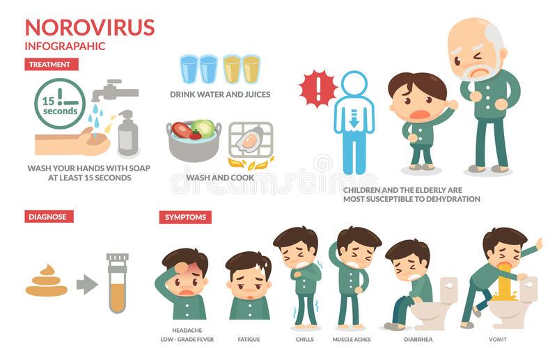 Norovirus Stock Illustrations.