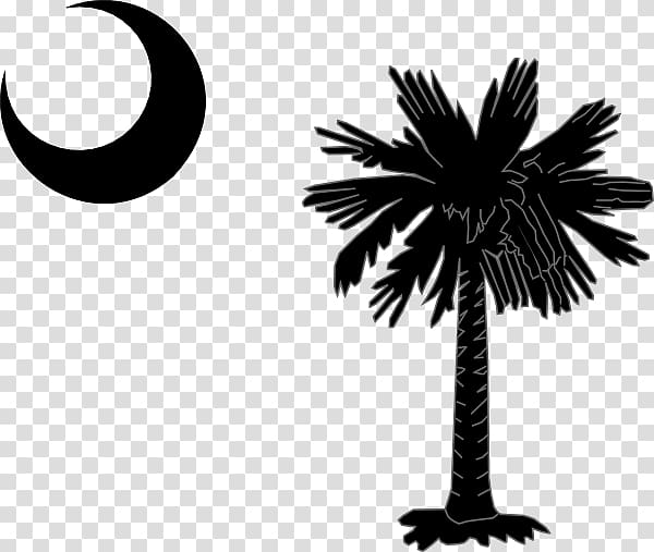 Flag of South Carolina Sabal Palm Flag of North Carolina.