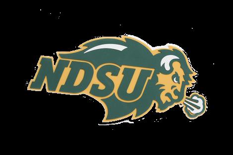 North Dakota State University Bison 3D Logo Fan Foam.