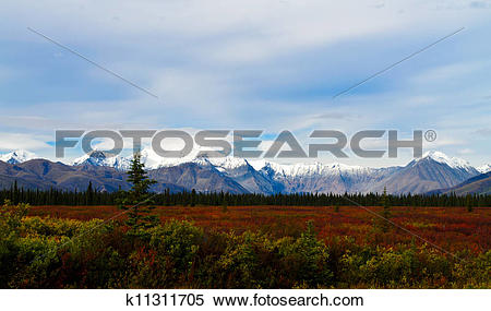 Stock Image of North face Mt. Mckinley/Denali k11311705.