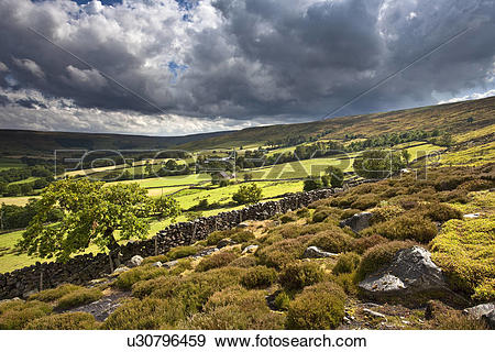 Stock Photograph of England, North Yorkshire, Westerdale Moor.